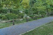 picture of leafy  - Stone road and leafy nature in the japanese garden located in Montevideo Uruguay - JPG