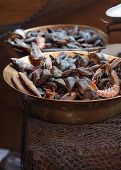 pic of clam  - Traditional asian fish market stall full of fresh shell clam seafood - JPG
