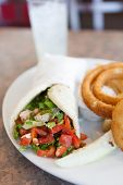 picture of deli  - Chicken pita wrap sandwich with onion rings and a deli pickle slice. Shallow depth of field.