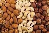 picture of brazil nut  - Peanuts walnuts almonds hazelnuts brazil and cashews nuts mixed together - JPG