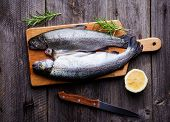 image of brook trout  - Fresh trout with lemon and rosemary - JPG