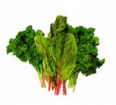 foto of root-crops  - Healthy green vegetables - JPG