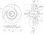 picture of degree  - Expanded wheel sketch with hatching - JPG