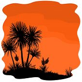 foto of tropical plants  - Tropical Palm Trees and Yucca Plants Black Silhouettes on Orange Background - JPG