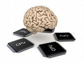 image of microprocessor  - Human brain and microprocessor - JPG