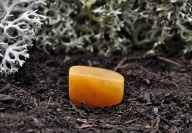foto of calcite  - Colorful and crisp image of orange calcite on forest floor - JPG