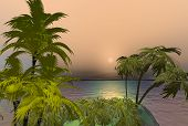 stock photo of tropical island  - The island below from above the coconut palms on this tropical island - JPG