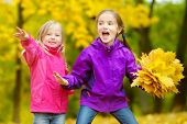 Two Cute Little Girls Having Fun On Beautiful Autumn Day. Happy Children Playing In Autumn Park. Kid poster