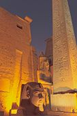 picture of ramses  - The obelisk and statue of the King Ramses II - JPG