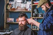 Barber With Clipper Trimming Hair On Temple Of Client. Hipster Lifestyle Concept. Hipster Client Get poster