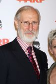 LOS ANGELES - FEB 6:  James Cromwell arrives at the AARP's 11th Annual Movies For Gownups Awards at