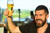 Beard Man Drinking Beer From A Beer Mug. Man Drinking Beer. Man With Beer poster