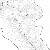 Topographic Map Background. Grid Map. Vector Illustration . poster