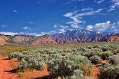 Views Of Red Mountain Wilderness And Snow Canyon State Park From The  Millcreek Trail And Washington poster