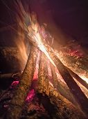 Close The Fire Flame Of Marching Fire, Super Slow Motion Of Burning Wood. Bright Bonfire With Beauti poster