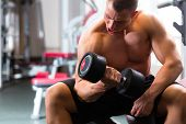 picture of dumbbells  - Strong man - JPG