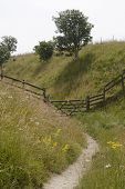 Footpath And Gate. Wiltshire. England
