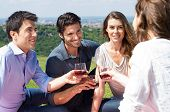 foto of nic  - Group Of Happy Young Friends Celebrating Outdoor - JPG