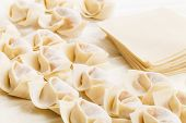 image of raw materials  - Homemade dumpling and raw material - JPG