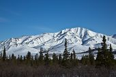 stock photo of denali national park  - Landscape view of the forests and mountains of Alaska - JPG