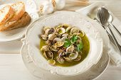 picture of clam  - clam soup - JPG