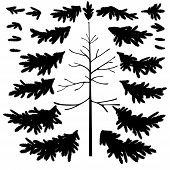 foto of naturalist  - Christmas fir tree trunk and branches black silhouettes set isolated on white background - JPG