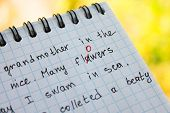 stock photo of grammar  - The bug is fixed in red pen in a notebook - JPG
