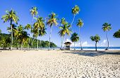 pic of greater antilles  - beach Maracas Bay in island of Trinidad - JPG