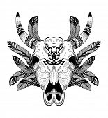 image of cow skeleton  - psychedelic ethnic cow scull with feathers - JPG