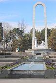image of sochi  - Sochi - JPG