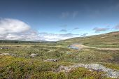 foto of arctic landscape  - Beautiful tundra landscape in northern Norway at summer - JPG