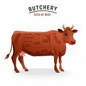 pic of flank steak  - Butchery beef cuts diagram  - JPG