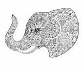 image of indian elephant  - Tattoo profile elephant with patterns and ornaments - JPG