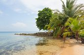 stock photo of deserted island  - Deserted Boca del Drago beach on the archipelago Bocas del Toro - JPG