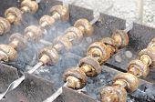 picture of brazier  - Brown juicy mushrooms cooked on the brazier - JPG