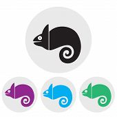 picture of chameleon  - Stylized silhouette of a chameleon in different colors on a light background - JPG
