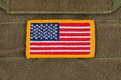 picture of coyote  - Rounded American flag patch on U - JPG