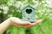 stock photo of nesting box  - Decorative nesting box in female hands on blooming garden background - JPG