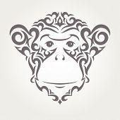 stock photo of chimp  - Illustration of monkey - JPG