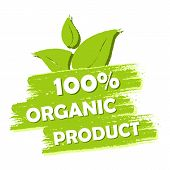 stock photo of 100 percent  - 100 percent organic product with leaf sign banner green drawn label with text and symbol business eco bio concept - JPG