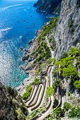 picture of twisty  - Patch on a Capri island in a beautiful summer day in Italy - JPG