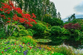stock photo of garden eden  - Delightful landscaped and floral park Butchart Gardens on Vancouver Island - JPG