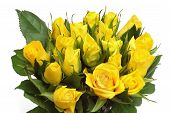 image of yellow rose  - yellow roses bouquet isolated on white background - JPG