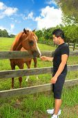 Man Feeding A Horse In A Paddock