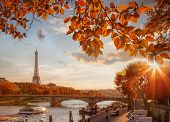 Paris With Eiffel Tower Against Autumn Leaves In France poster