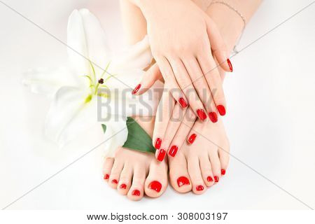poster of Manicure and Pedicure in beauty salon. Spa, skin care, moisturizing concept. Healthy Female hands an