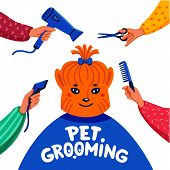 Pet Grooming Concept. Happy Lap-dog And Hands With Comb, Hair Dryer, Scissors And Haircut Clipper On poster