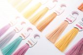 Hair Palette Dyed Different Colors. Hairstyle Wig Tints Set For Beauty Industry poster