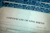 Closeup of Birth Certificate official paper baby born poster