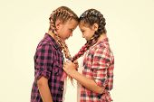 Girls Friends Similar Hairstyle Braids White Background. Sisters Family Look. Kanekalon Hairstyle. L poster